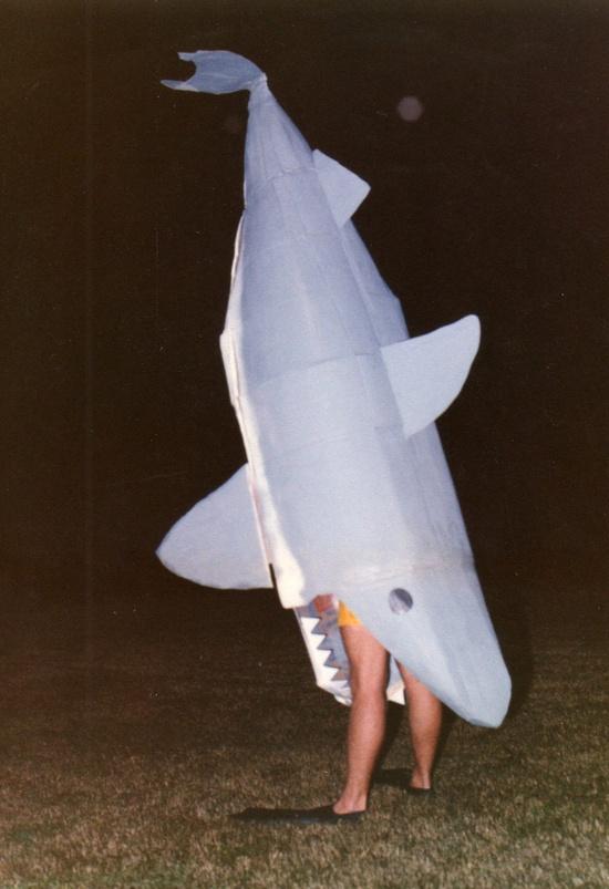 Cardboard Shark
